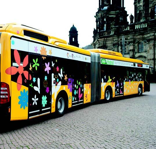 DVB-Hybridbus